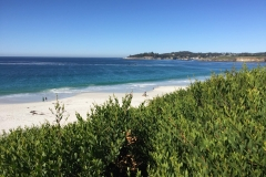 37. The Beach at Carmel