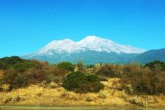 56. Mt. Shasta copy