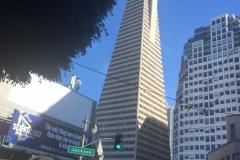 1. Day in San Francisco